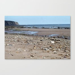 Low Tide East Coast Canvas Print