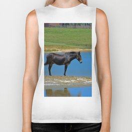 Black Horse. Animal. Pennsylvania Biker Tank