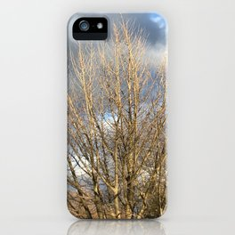 Tree in storm iPhone Case
