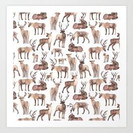 Christmas Reindeer.  Art Print