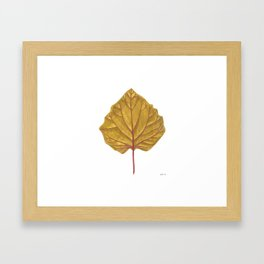 Goldenberry leaf Framed Art Print