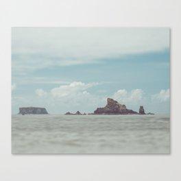 IMAGE: N°14 Canvas Print