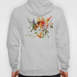 Hummingbird and Orange Floral Design, tropical Hawaiian Colors Hoody