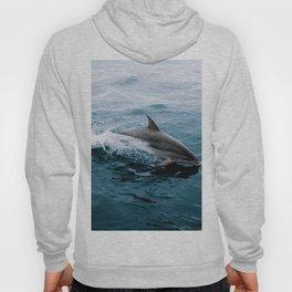 Dolphin in the Atlantic Ocean - Wildlife Photography Hoody