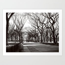 Central Park Promenade in Winter, NYC  Art Print