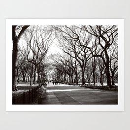 Central Park Promenade in Winter, NYC  Art Print