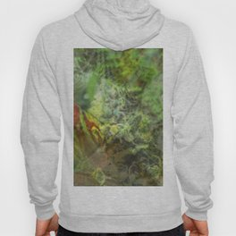 Legalize Cannabis Hoody