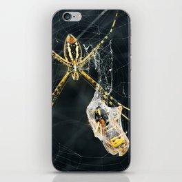 Yellow Garden Spider With Prey iPhone Skin