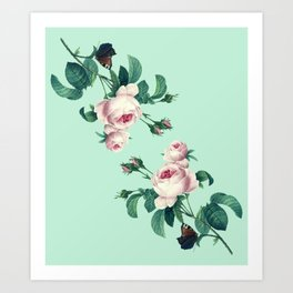 Roses Mint Green + Pink Art Print