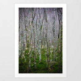 Ireland - Glendalough Art Print
