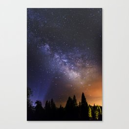 Star filled night Canvas Print