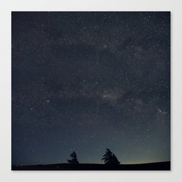 Starry night over the trees Canvas Print