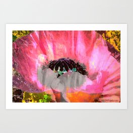 For Love of Poppies Art Print