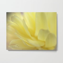 Mellow Yellow Peony Close up Metal Print