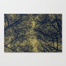 TREE 1.2 Canvas Print