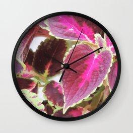 Coleus plants #3 Wall Clock