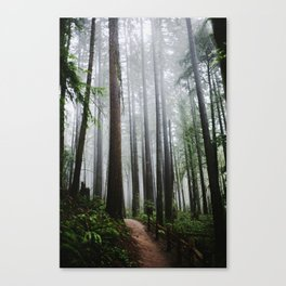 Forest Park Canvas Print