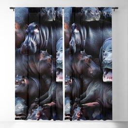 Hippos Blackout Curtain
