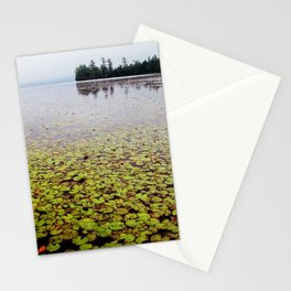 field of lilly pads Stationery Cards