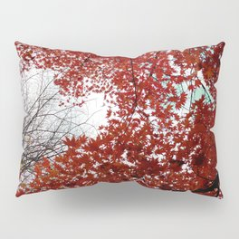 Red maple #2 Pillow Sham
