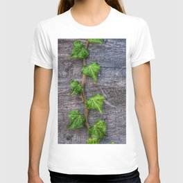 Ivy on Wood Wallpaper T-shirt