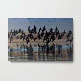 Sandpipers at Dusk Metal Print