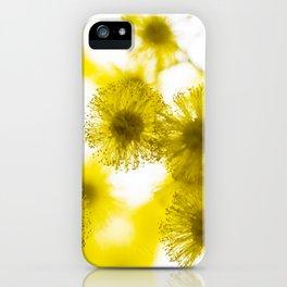 Acacia Flower V iPhone Case