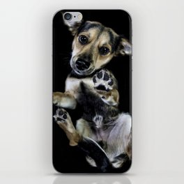 Puppy - Underdog Projectt iPhone Skin