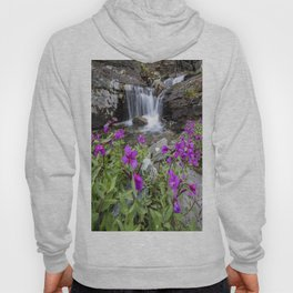 Secluded Waterfall Hoody