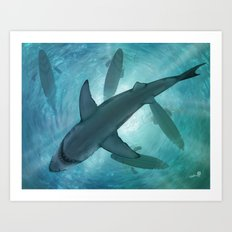 Great White Art Print