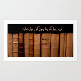 Sadi Art Print
