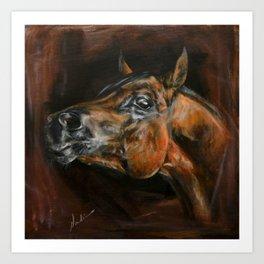 arab horses face Art Print