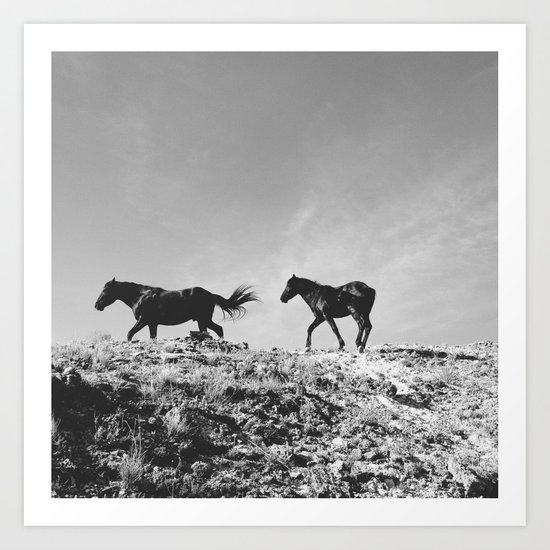 Pryor Mountain Wild Mustangs Art Print