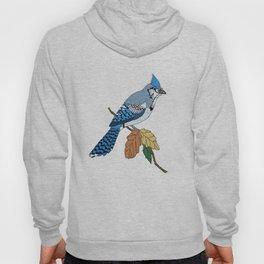 Blue Jay Hoody