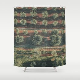 Aerial photo, italian landscape, drone photography, olive trees, nature patterns, Apulia Shower Curtain