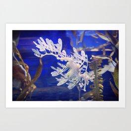 The Peculiar Seahorse Art Print