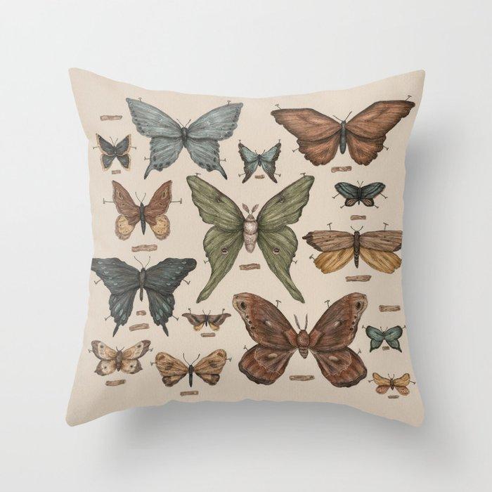 Butterflies and Moth Specimens Throw Pillow