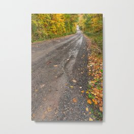 Serpent Forest Road Metal Print