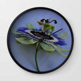 pation flower III Wall Clock