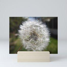 A Wish In The Making Mini Art Print