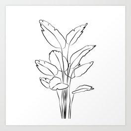 ''Plants Collection'' - Minimal One Line Plant Print Art Print