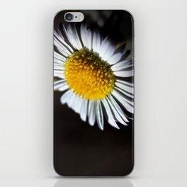 Facing The Sun iPhone Skin