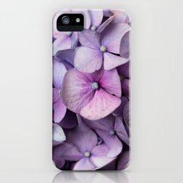 Shabby Chic Purple Hydrangea  iPhone Case