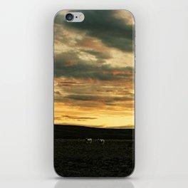Iceland - Sunset with sheep (Leica M3 & Kodak film) iPhone Skin