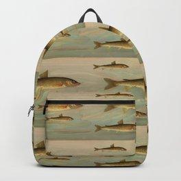 Something Fishy  Backpack