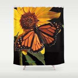 Monarch on a Desert Sunflower Shower Curtain