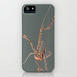 Gryphon Skeleton Anatomy No Labels iPhone Case