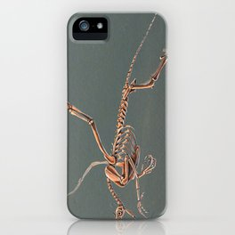 Gryphon Skeleton Anatomy No Labels iPhone Case