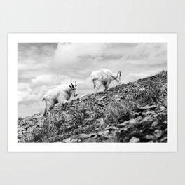 MOUNTAIN GOATS // 4 Art Print