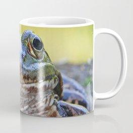 Smiling Frog Coffee Mug
